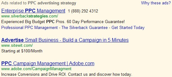 Ecommerce PPC Advertising Strategy